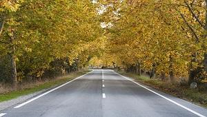 conduire-automne-securite